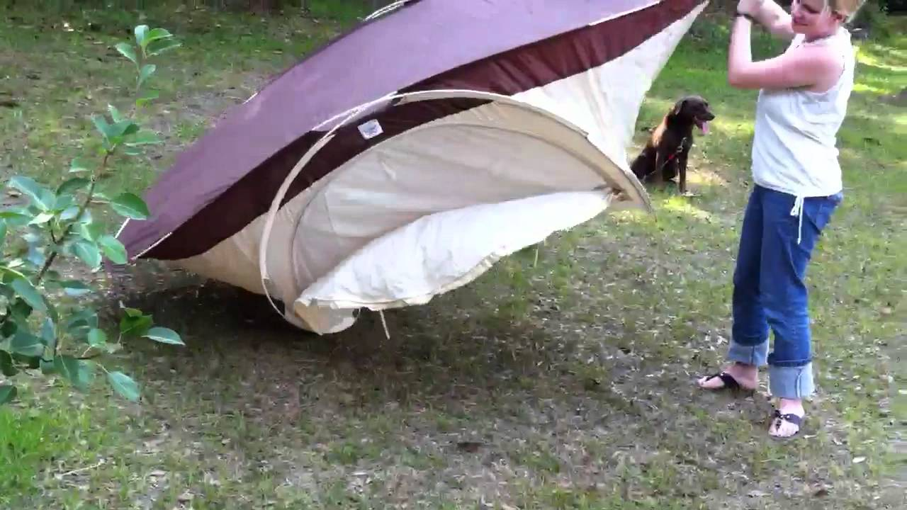 Pop tent Inc & Pop tent Inc - YouTube