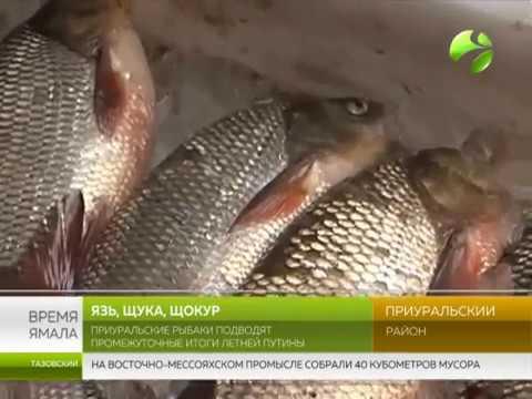 Новости Ставрополя на : главные события города.