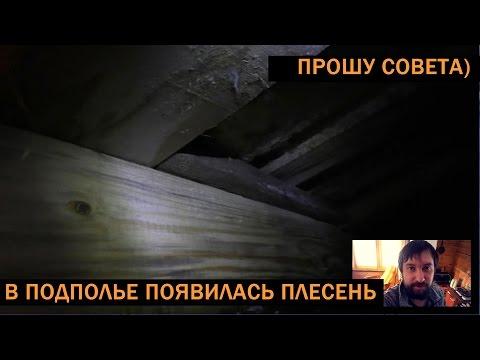 Плесень под полом (в подвале, в подполе)... Как извести? Вопрос.