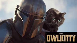If Baby Yoda was a Cat (Mandalorian + OwlKitty)