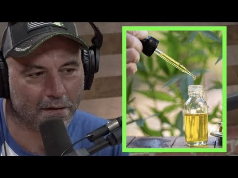 "Joe Rogan ""CBD is One of the Best Things I've Ever Tried for Anxiety"""