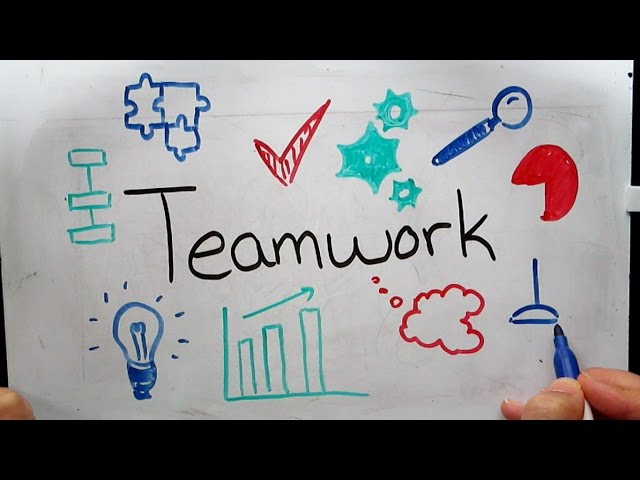 Promoting Effective Teamwork in Healthcare