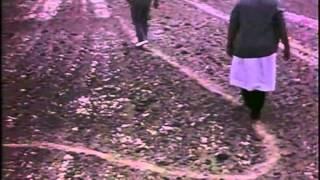 L'ENIGME DE NAZCA, MARIA REICHE / LA COURSE AUTOUR DU MONDE 83/84