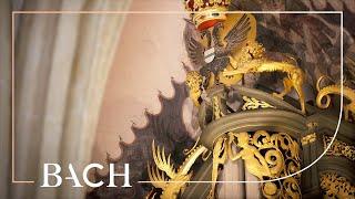 Bach - An Wasserflüssen Babylon BWV 653 - Van Doeselaar   Netherlands Bach Society