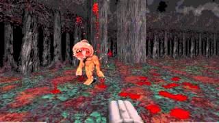 Blood: Cryptic Passage - (10) Boggy Creek (Secret level)