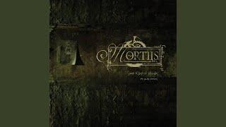 Broken Skin feat. Stephan Groth (Funker Vogt Remix)