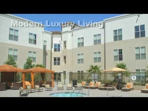 Avalon Walnut Creek Ca Luxury Apartments Communities