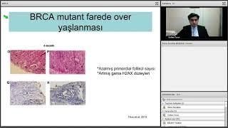 BRCA gen mutasyonunun over yaşlanmasında rolü var mı?