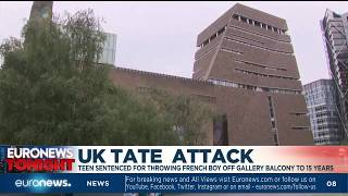 UK Tate Attack: teen sentenced for throwing french boy off gallery balcony to 15 years
