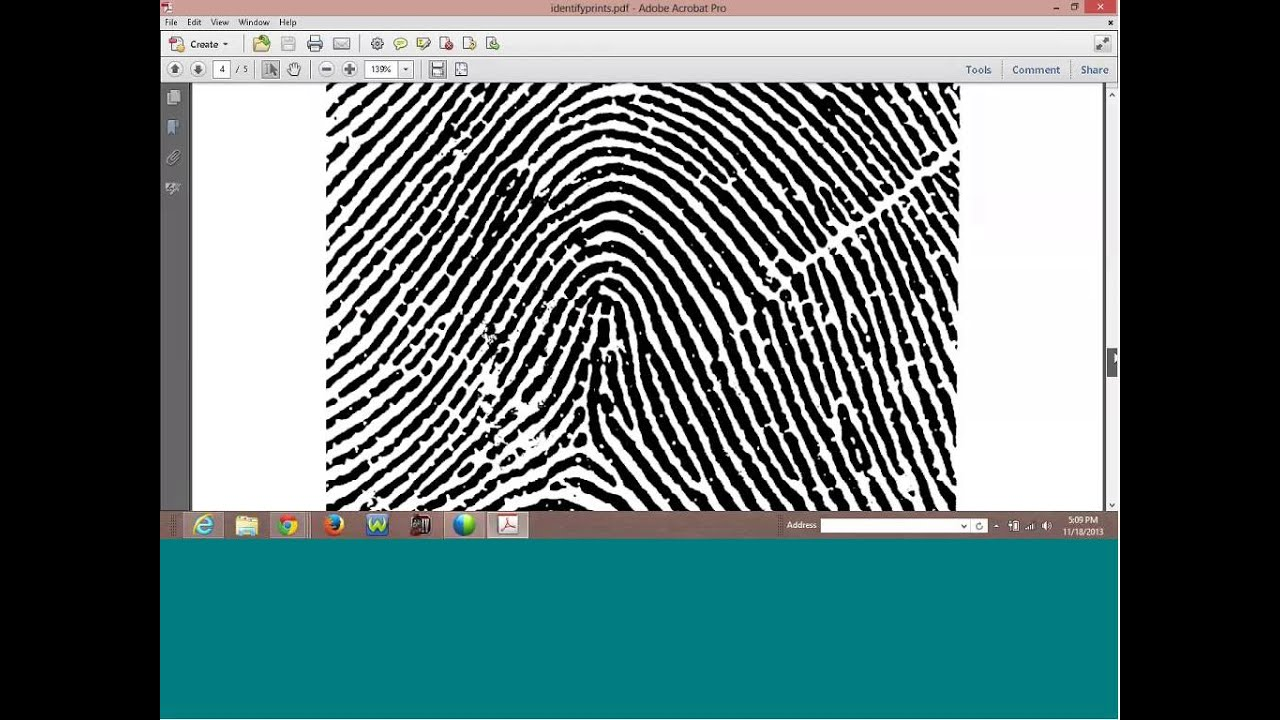 Fingerprinting is a way to identify a person by fingerprints. Papillary pattern 29