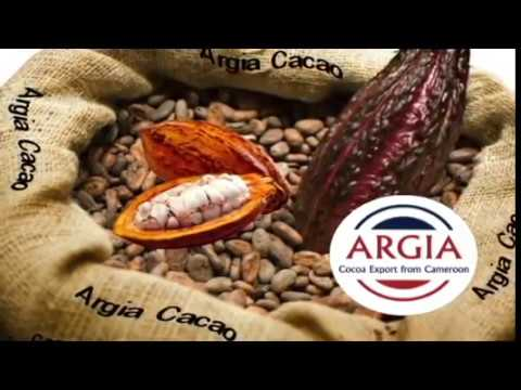 Argia Cacao export from Cameroon