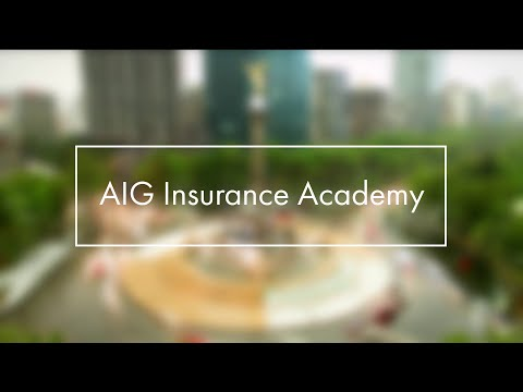 AIG Insurance Academy: #LifeatAIG