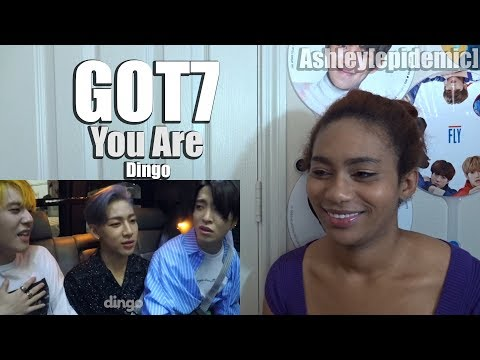 GOT7 You Are Dingo Reaction