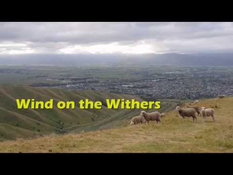 Wind on the Withers
