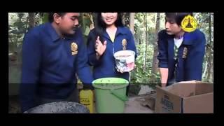 Cara membuat pupuk organik