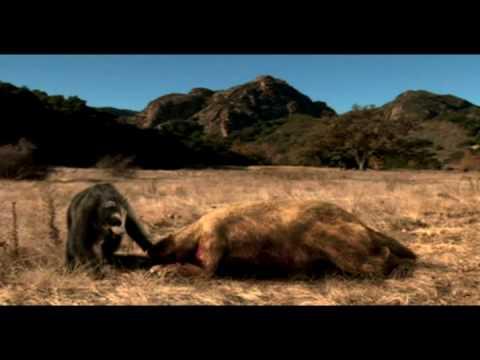 Short faced bear vs Ground sloth