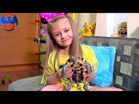 ВЛОГ Новый ДРУГ Ярославы - Черепаха Тоша! Играем с домашним питомцем Видео для детей