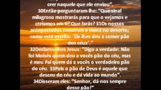 João Capítulo 6 - Bíblia em áudio e escrita - Versão NVI.