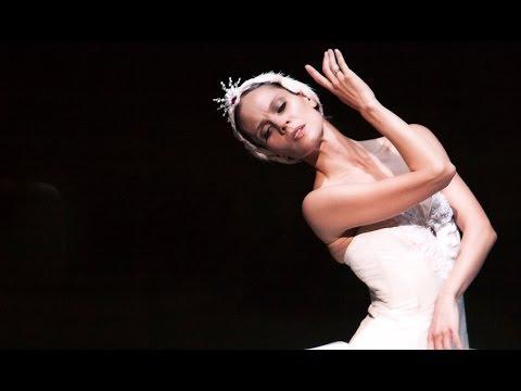 Het Zwanenmeer: trailer - Het Nationale Ballet   Dutch National Ballet