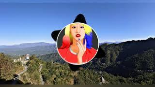 Triau Trackx Vs Marshmello   Van In Nuam Vs Fly   Mashup Songs   Cover Mix