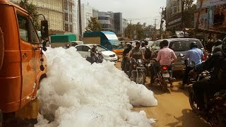 Varthur Lake (ವರ್ತೂರು ಕೆರೆ) : most polluted lake in Bengaluru