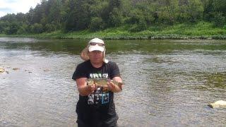 Риболовля на головльов на річці Ай в Челябінській області, частина 6
