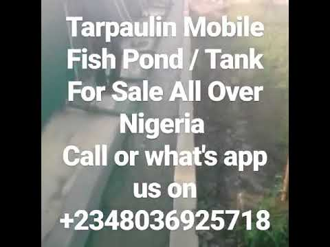 Cheap Fish Ponds For Sale