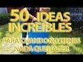 12 COSAS que NO DEBES hacer con TU PERRO🐶 - YouTube