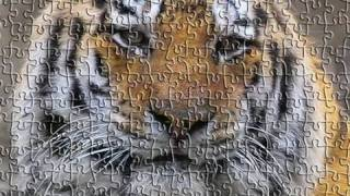 Tutorial Photoshop CS5 - Puzzle effect