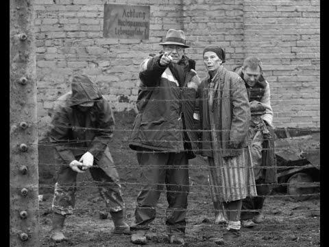 Рай Кончаловского: Льва взяли, будет ли Оскар?