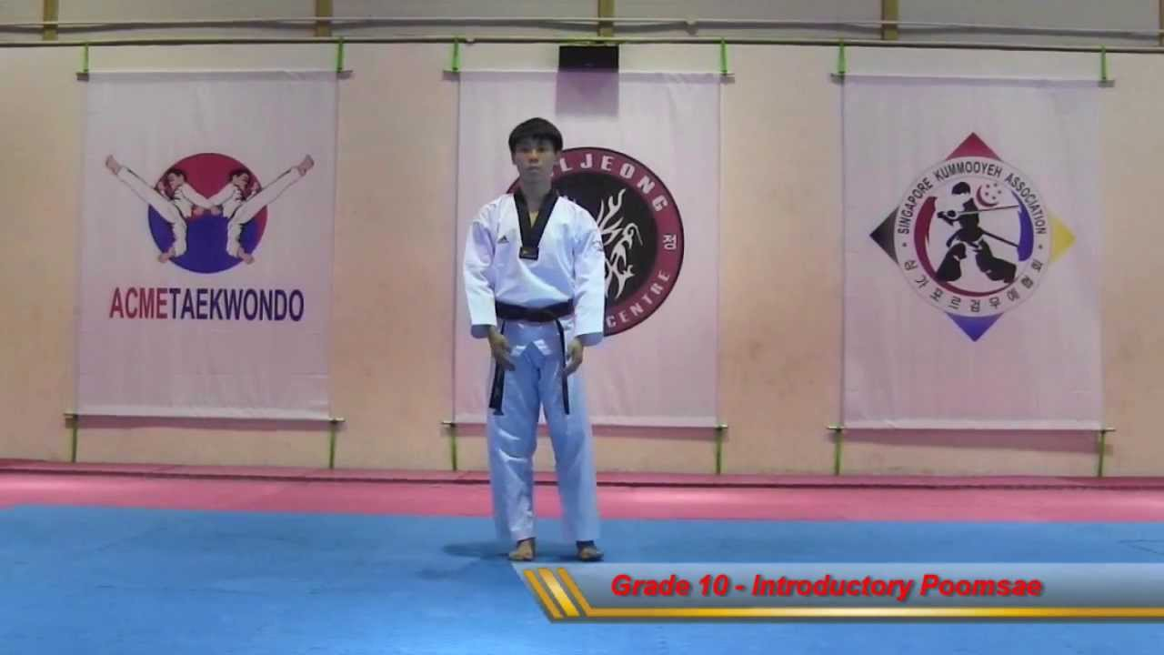 Introductory Poomsae (Grade 10)
