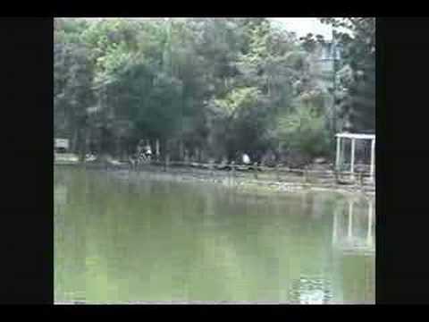 練習曲2:台大不會太大, 練習曲Lian Xi Qu Island Etude Parody