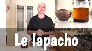 Le lapacho : propriétés anti-cancer et anti-candida albicans