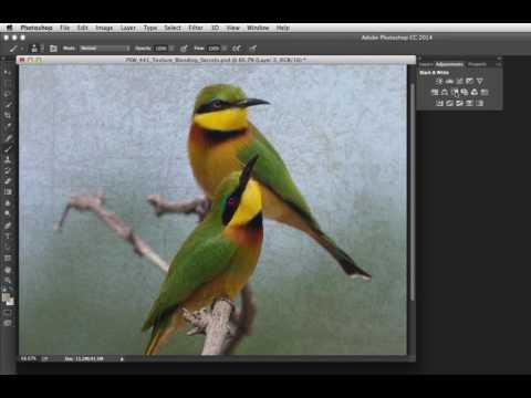 #Photoshop Workbench 441: Texture Blending Secrets