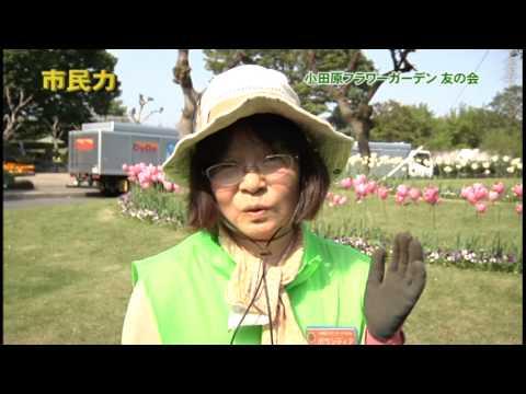 市民力 Vol.30 「小田原フラワーガーデン友の会」