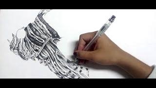 Scientific Illustration- Madalena Silva Carlos
