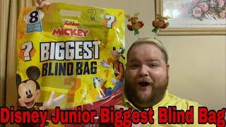 Details about  /Minnie BIGGEST BLIND BAG