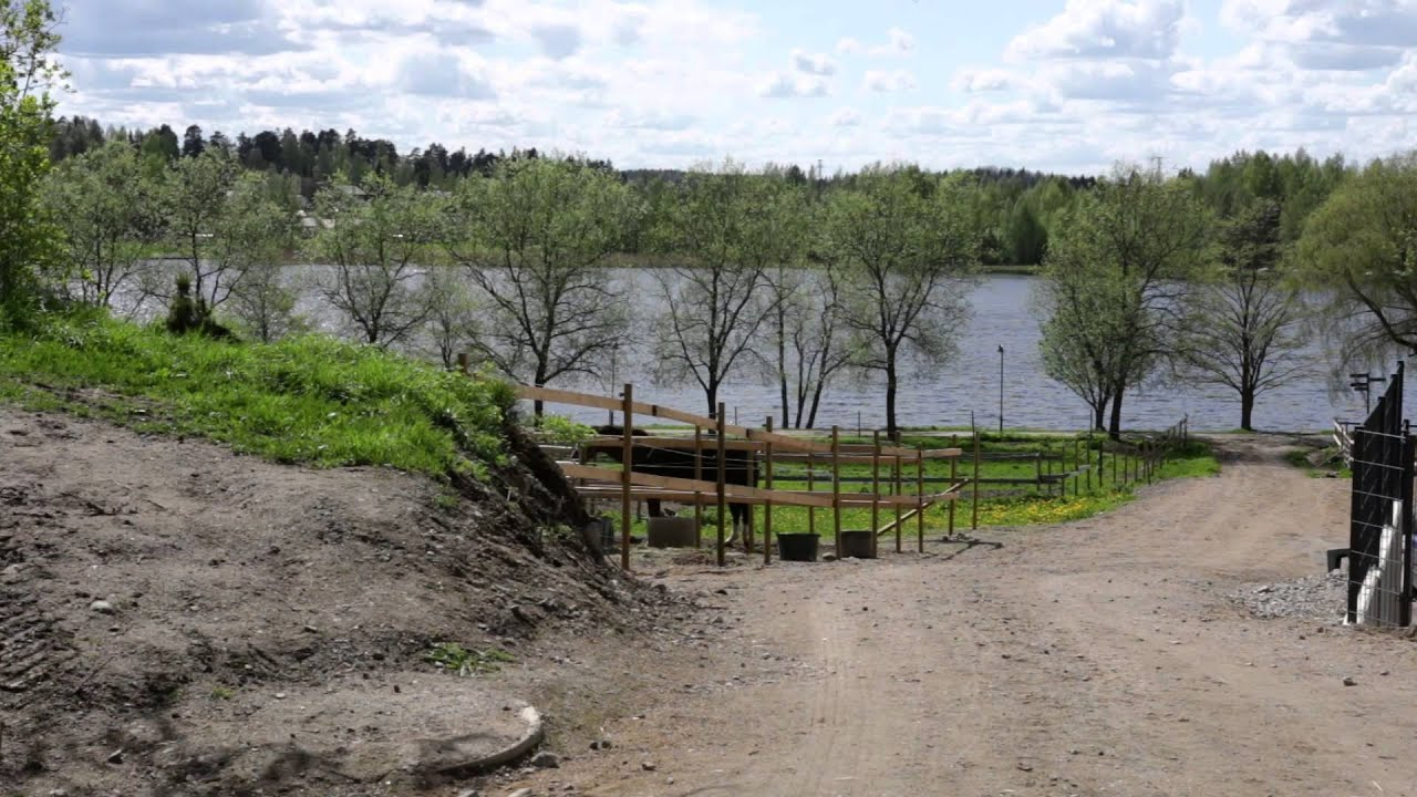 Ratsastus Oulu