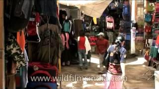 Market in Leh, Ladakh