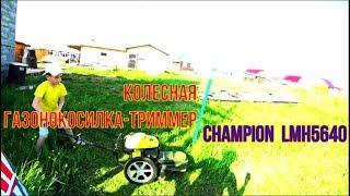 Видео Колесный триммер-газонокосилка CHAMPION LMH5640 (автор: Алексей Наумик)
