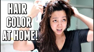 AT HOME HAIR COLOR! -  ItsJudysLife Vlogs