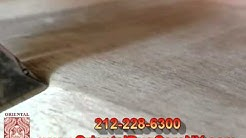 Bedbugs Treatment NY New-York Rid Of Bed Bugs 212-228-6300