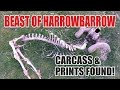 Beast of Harrowbarrow - Carcass & Footprints Found!