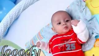 Toyor Al Jannah - Mama Jabet Baby