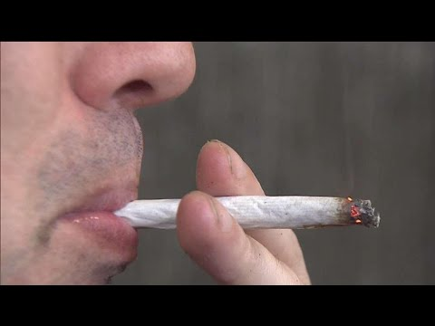 Examining effects of second-hand pot smoke