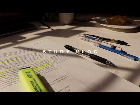[한국어] Rainy Day Study Vlog (ap Exams Study With Me)