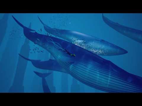 Abzû: Whale Dance