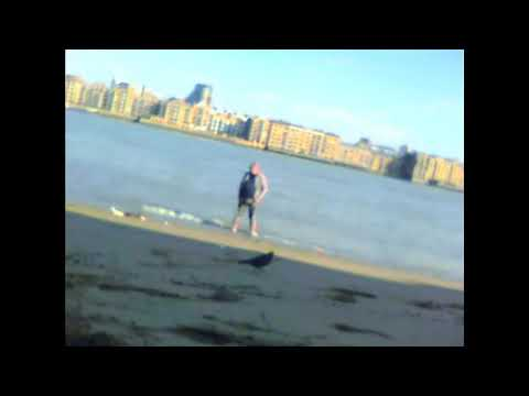 On the Beach Rotherhithe  Thames uk
