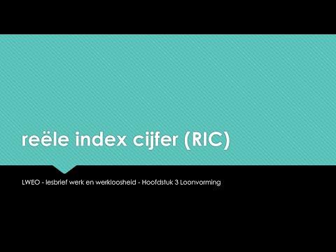 Les 11 - Reel Indexcijfer (RIC) - lesbrief Werk & Werkloosheid - LWEO - HAVO4 - economie