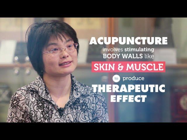RMIT talks about Acupuncture